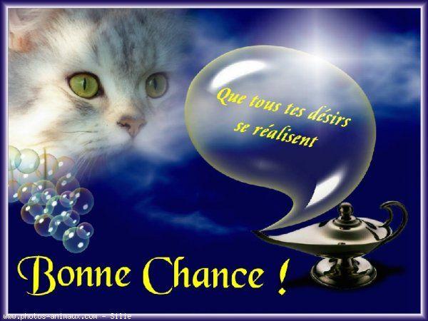 http://anaelle222.a.n.pic.centerblog.net/5w9oaaoi.jpg